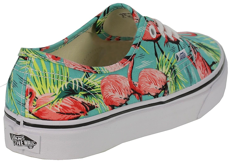 chaussures Vans Authentic Van DorenTurquoiseFlamingo