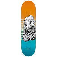 skateboard Primitive Ribeiro Jungle - Orange