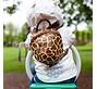 batoh Littlelife Animal Toddler - Giraffe
