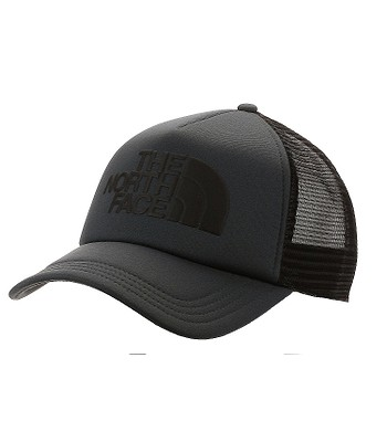 cap The North Face TNF Logo Trucker - Asphalt Gray/TNF Black